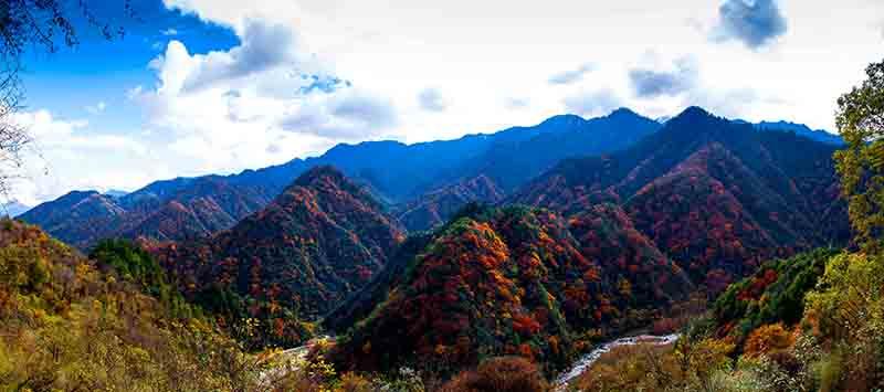 唐家河风景1.jpg